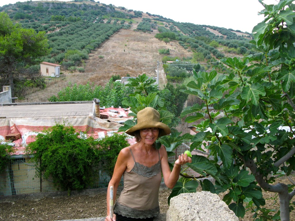 Ovoce rajskych stromu
